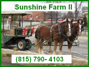 Sunshine Farm II - We Provide Professional Services for Any Occasion!